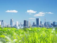 В Вологде проводятся два экологических конкурса