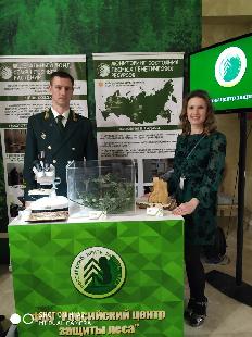 В Общественной палате РФ состоялся всероссийский форум «Лес: диалог общества и власти ради сохранения среды обитания»