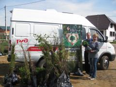 5000 деревьев подарили РЖД