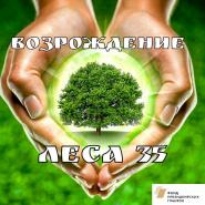 Бесплатные деревья для вологжан